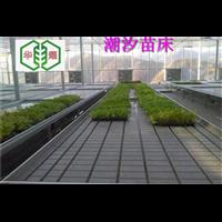 供应温室底部灌溉潮汐苗床优势华耀厂家现货促销