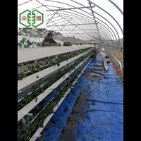 宁夏防腐耐用草莓立体种植槽价格实惠供应商华耀