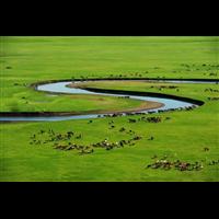 内蒙古草原包车费用