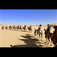 内蒙古包车旅游-天行键专业接待团体