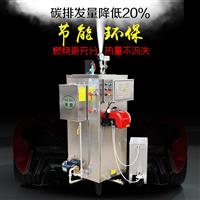 60公斤燃油蒸汽发生器