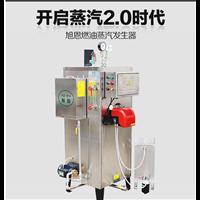 50公斤燃油蒸汽发生器