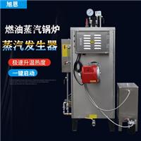全自动小型燃油蒸气发生器维护与保养