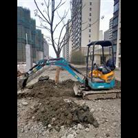 天台县挖掘机出租