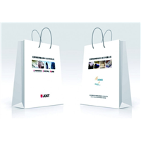 广州番禺区手提袋印刷公司