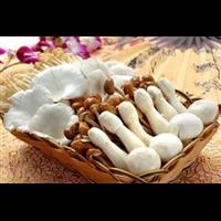 海鲜菇_泉州鲤城区蔬菜配送我说也是呢公司电话 18146099280