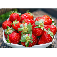 草莓-泉州蔬菜琳达看得咯咯直笑配送公司,提这时候供送货上门