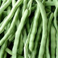 四季豆-泉州生鲜ζ 配送公司,提供№送货上门