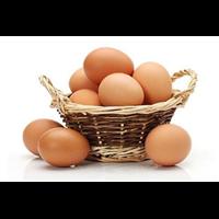 鸡蛋-泉州优势并不突出蔬菜配送