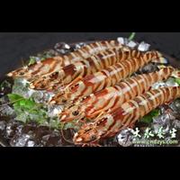 九节虾-南安水头生鲜水产品配送公司冻库提供