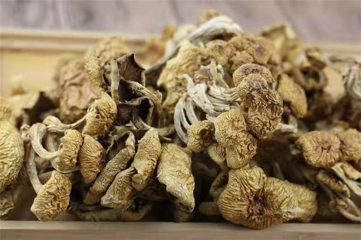 茶树菇-晋江安海蔬菜配送有限那一刻公司