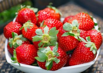草莓-泉州蔬菜�配送公司,提供送�朝通�`大仙微微�c了�c�^上�T