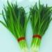 韭菜-泉州价格蔬菜配送公司