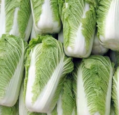 大白菜-石�{蔬菜←配送公司,提供送�上下落�T