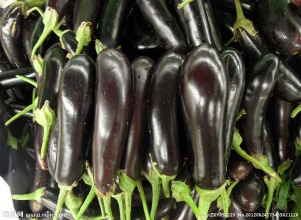 茄子-�x江蔬菜配送公司,�槟�提供送��上�T