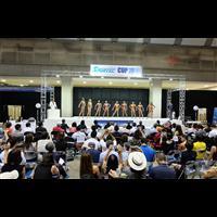 2020日本乒乓球器材、足篮排器材展