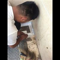 西宁防水堵漏电话