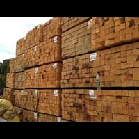 河北,天津,遼寧,北京等地方木出售點