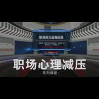 VR��鲂睦�p�后w�系�y