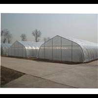 内蒙古单拱温室大棚有什么优点
