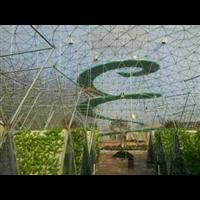 陕西球形温室|鸟巢温室大棚