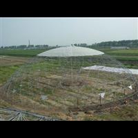 江苏球形温室,球形温室大棚厂家