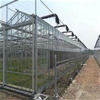 江苏玻璃大棚建设厂家