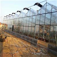 辽宁玻璃温室大棚厂家