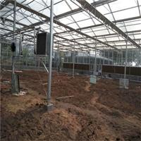 黑龙江智能温室大棚哪里建设的更权威,盛鸿温室大棚建设