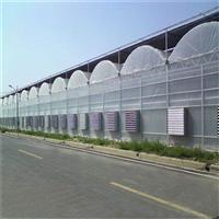 蔬菜温室建设注意的细节温室大棚连栋大棚连栋设计