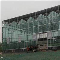 智能温室的配置和特点智能温室大棚价格温室智能建设
