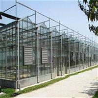 智能温室滴灌系统如何维护智能玻璃温室玻璃智能温室