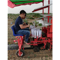 山东种菜机生产厂家