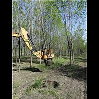 河南挖树机生产厂家