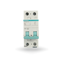 微型断路器 2P C50A