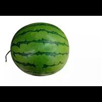 西瓜-栽培历史
