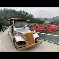 绿通玉林专业电动老爷车生产厂家