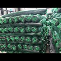 山东盖土网、遮阳网 安全网 草坪网生产厂家