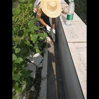 茶山镇铁皮瓦防水补漏楼面防水补漏价格屋面屋顶防水补漏
