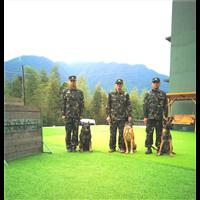 福州训犬基地