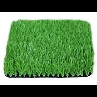 广西足球场草坪