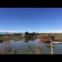 乌鲁木齐福寿园墓地景观