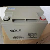 圣阳蓄电池SP12-38 12V38AH免维护铅酸电池高端原装正品