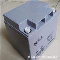 圣阳蓄电池SP12-33阀控式密封蓄电池12V33AH原装正品