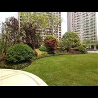 溧阳市园林绿化、小区绿化、城市道路绿化