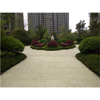 常州钟楼区园林绿化