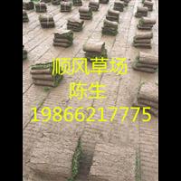 梅州草卷基地