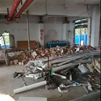 广州专业白蚁防治公司