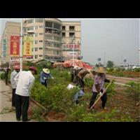 深圳园林绿化工程服务