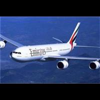 国际空运公司